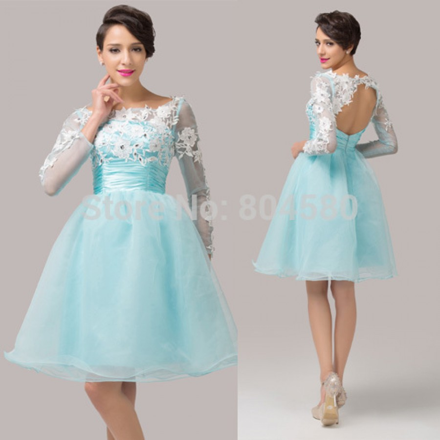 Organza Open Back Ball Gown Formal Party Dresses Short Embroidery ...